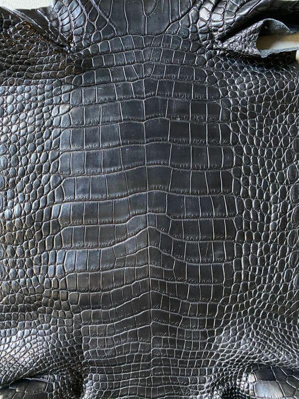 シャムクロコダイル(シャムワニ)の特徴
