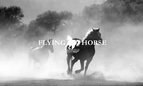 FLYING HORSE(フライングホース)